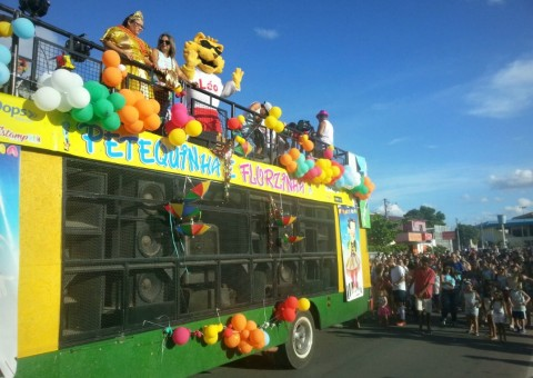 carnavalzinho (2)